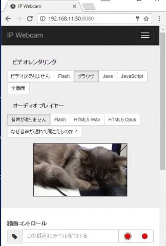 cat_remote_camera03